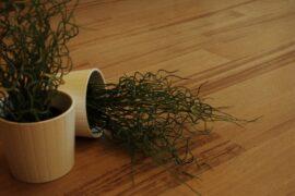 Parchet masiv stejar Brasov